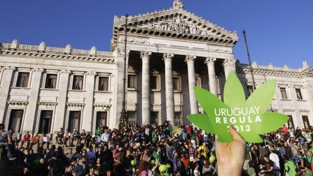 Uruguay marijuana move 'illegal' – UN drugs watchdog